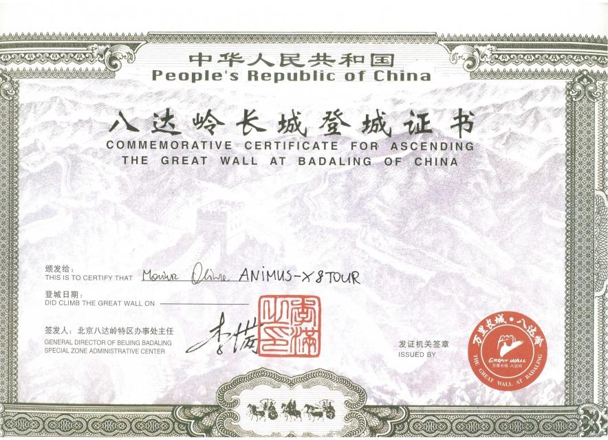 Animus-X--organizacja-wyjazdu--Mur-Chinski